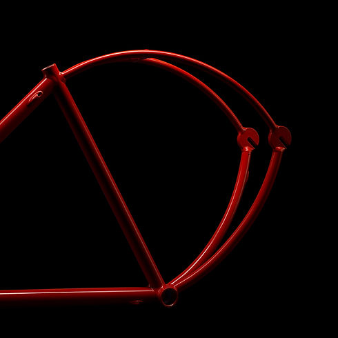 Curved Bicycle Frame