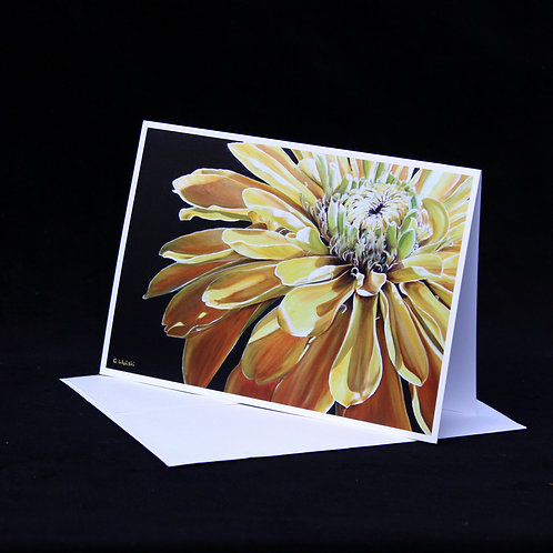 Note Card - The Offering
