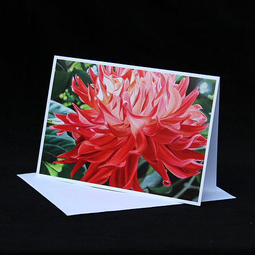 Note Card - The Queen Has Arrived