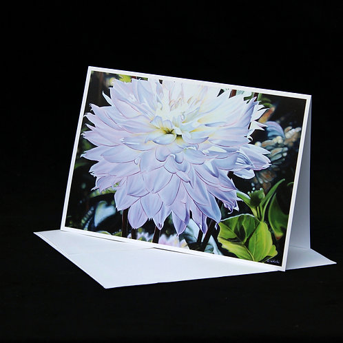 Note Card - It's Another Beautiful Day