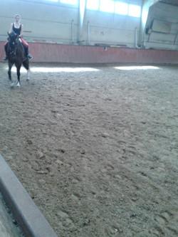 paardenpiste