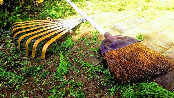 庭掃除の写真