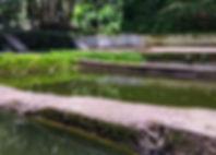 FincaElPilar1.jpg