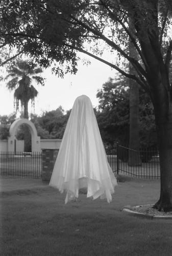 Kate Edmonson Phoenix ghost.jpg