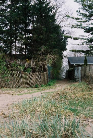 Kate Edmonson Sarnia Path 2.jpg