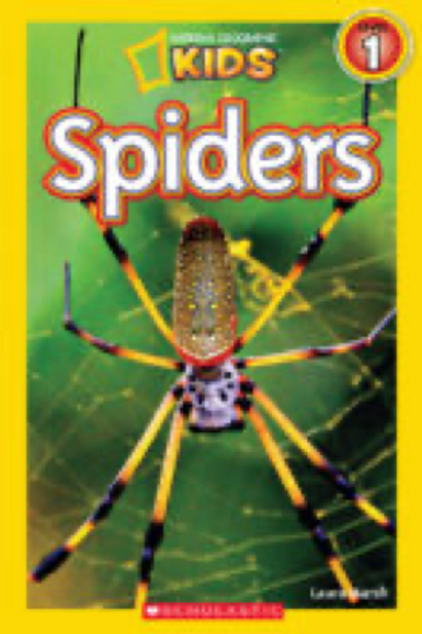 National Geographic Kids Readers: Spiders Laura Marsh