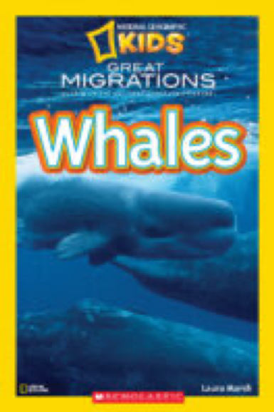 National Geographic Kids-Great Migrations: Whales      Laura Marsh