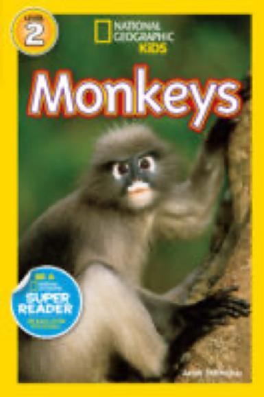 National Geographic: Monkeys, Anne Schreiber
