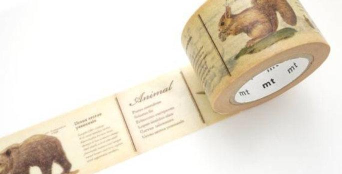 וואשי טייפ רחב : encyclopedia