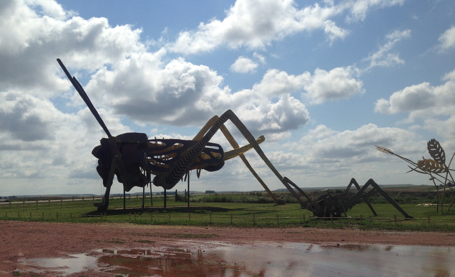 photo-grasshopper-enchanted-highway