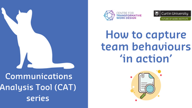 How to capture team behaviours 'in action' - Part 5