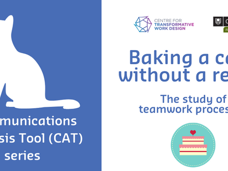 Baking a cake without a recipe: The study of teamwork processes