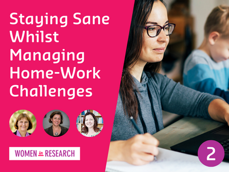 Webinar #2: Staying Sane Whilst Managing Home-Work Challenges