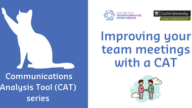 Improving your team meetings with a CAT - Part 4