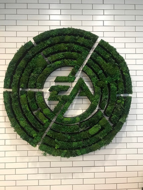 EA Sports live logo 10.jpg