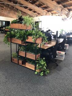 5 ft Planter 6-19.jpg