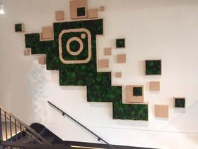 Instagram Live Logo1-1.jpg