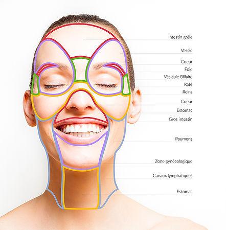 Zones-réflexe-visage-acupressure-geneve
