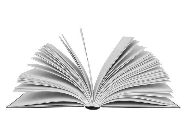 Læsepolitik