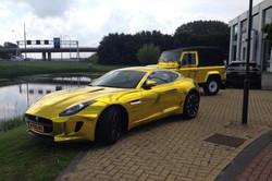 Gold-Chrome-Jaguar