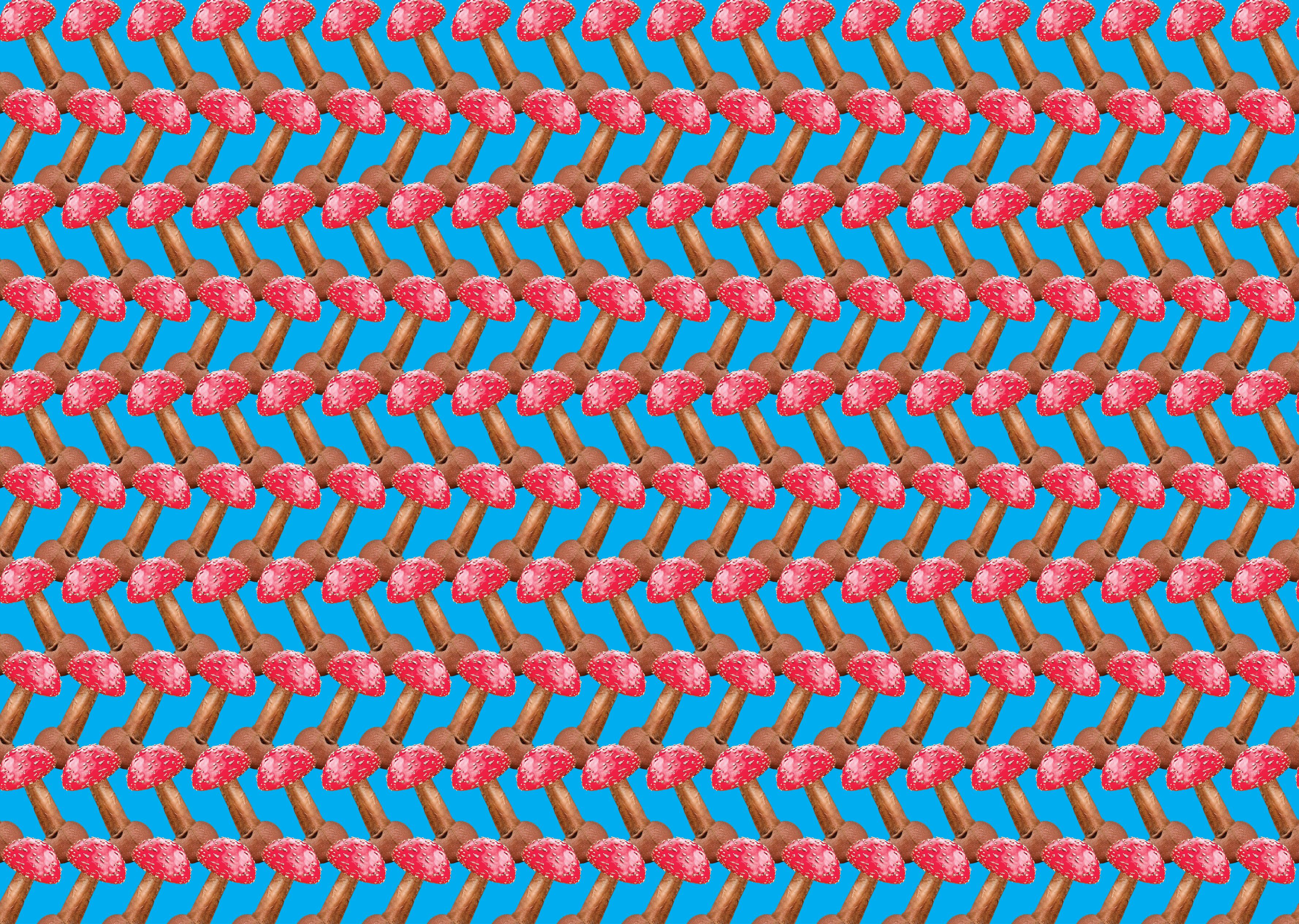 Biển Nấm
