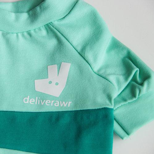 Deliverawr Delivery Uniform