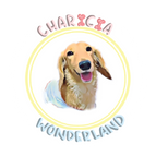 Charicia Wonderland logo.png