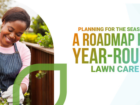 Campaign Spotlight: Planning for the seasons: a roadmap for year-round lawn care