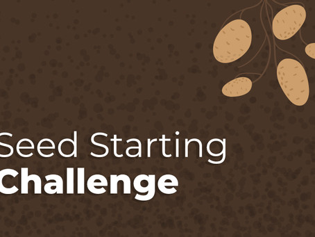 Campaign Spotlight: Seed Starting Challenge