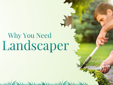 Campaign Spotlight: Why You Need a Landscaper