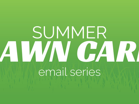 Campaign Spotlight: Summer Lawn Care Email Series