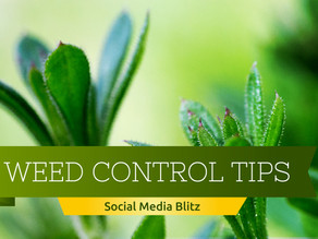 Campaign Spotlight: Weed Control Tips Social Media Blitz
