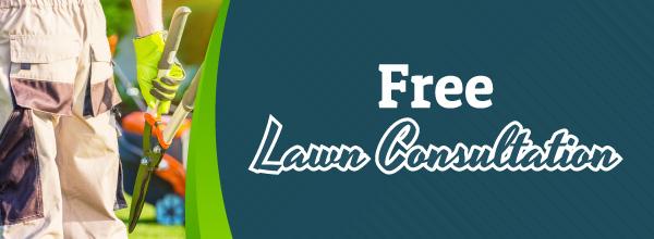 FreeLawnConsultation_PreviewThumbnail