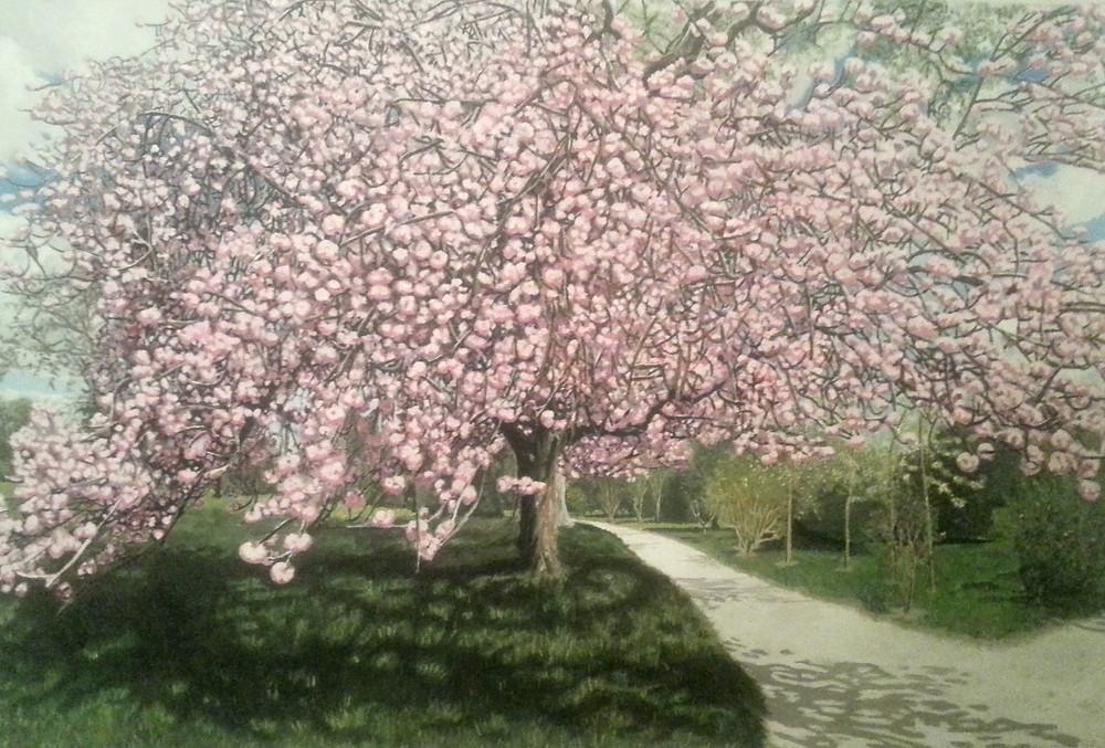 Cherry Blossum Realistic.jpg