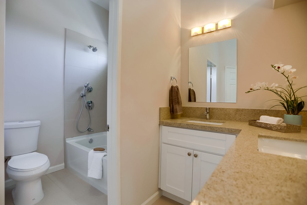 Master Bathroom 1801