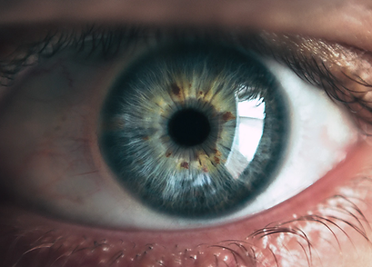 iris_unsplash.png