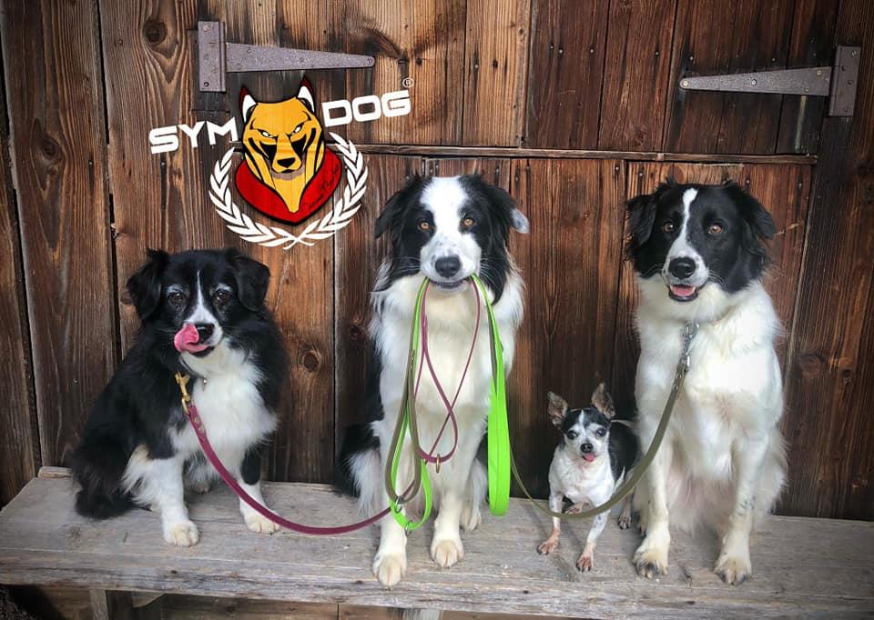 éducateur canin suisse, éducateur canin fribourg, éducateur canin neuchatel