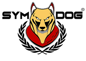 logo 2017 copie.png
