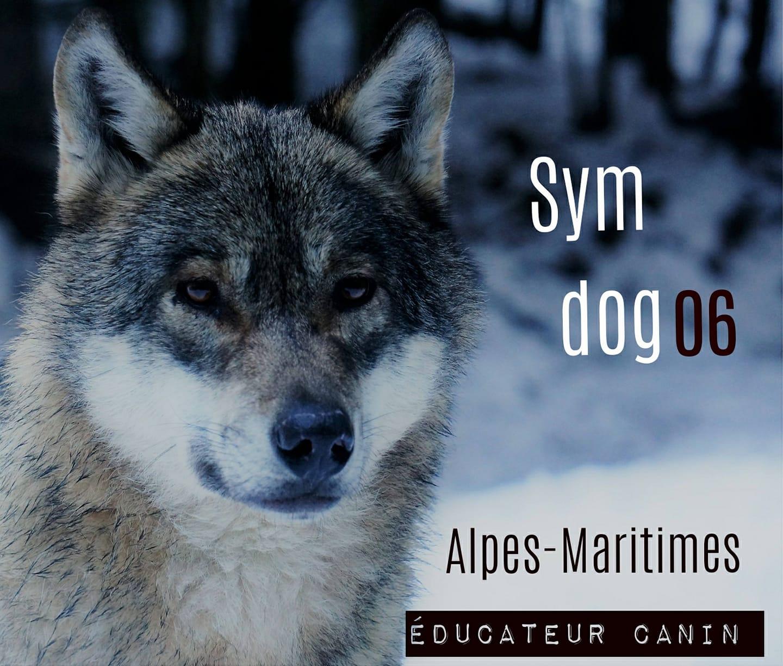 educateur canin nice, educateur cani