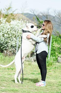 devenir educateur canin, avis symdog