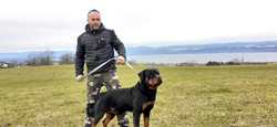 Éducateur canin 74, Dresseur de Chien 74, éducateur canin thonon les bains, éducateur canin haute Sa