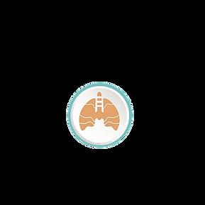 Système respiratoire réflexologie