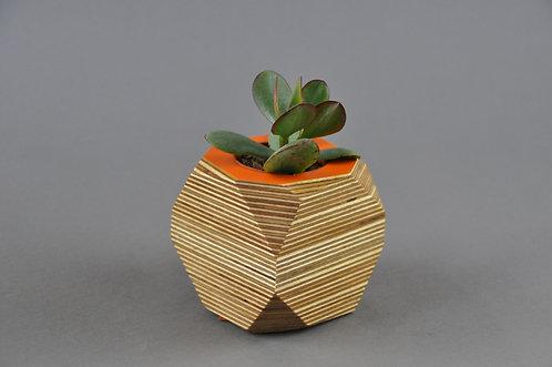 GEO VESSEL - Orange TOP