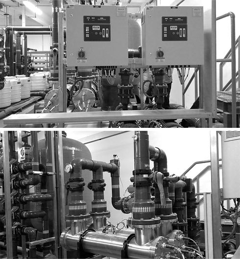 reverse osmosis in food processing