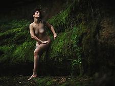 © Damien Desvarenne