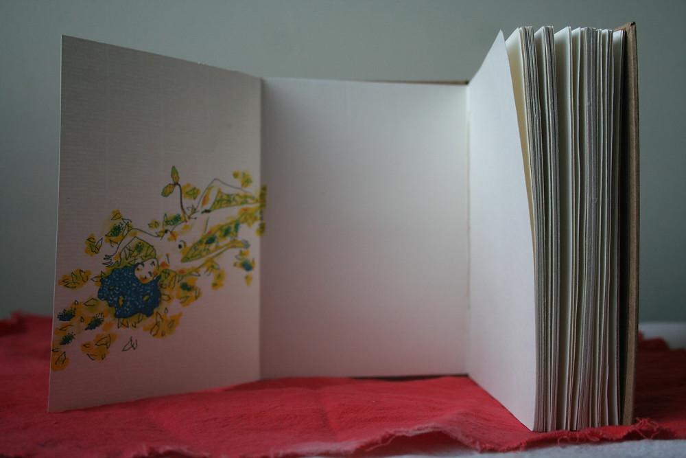 Livro TERRA com miolo em papel pólen e ilustração impressa.