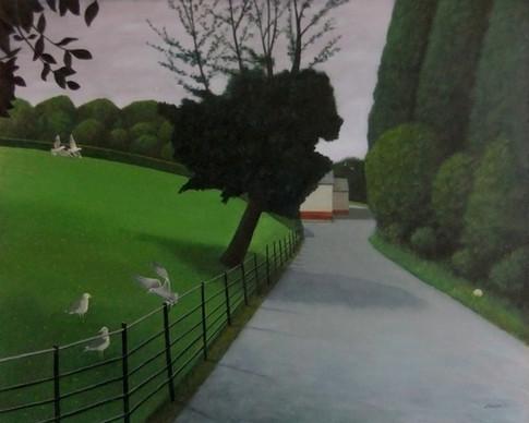 Gulls, Kelvingrove