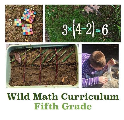 Wild Math Curriculum Fifth Grade