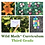 Thumbnail: Wild Math Curriculum Third Grade