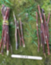Place value sticks- bundle 10 sticks tog